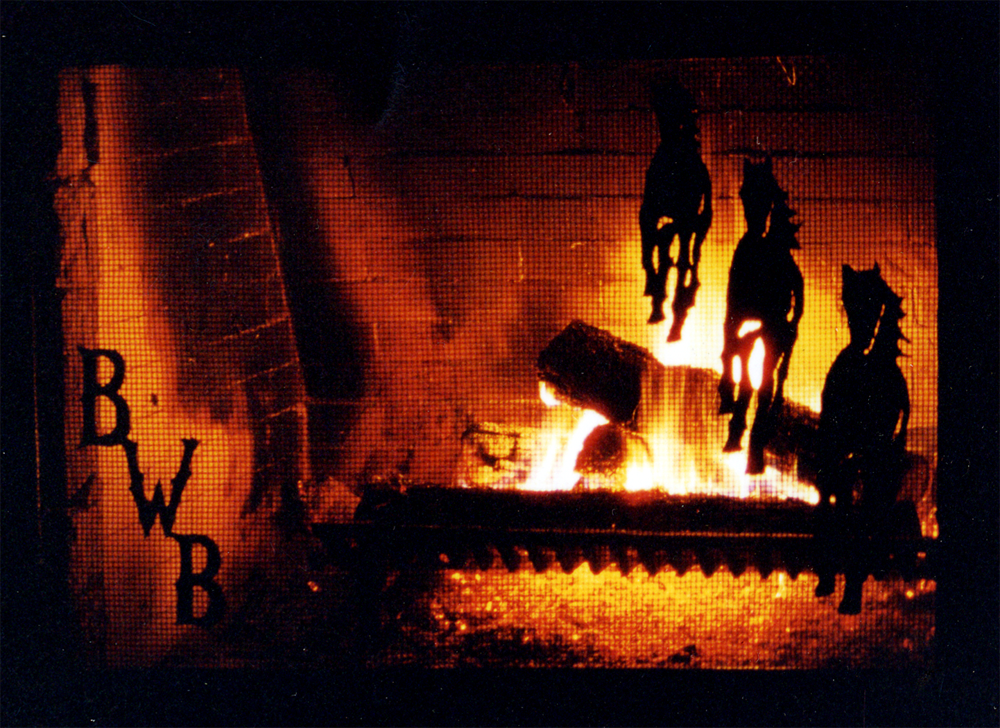 Fireplace Screen #3: shown in front of fireplace